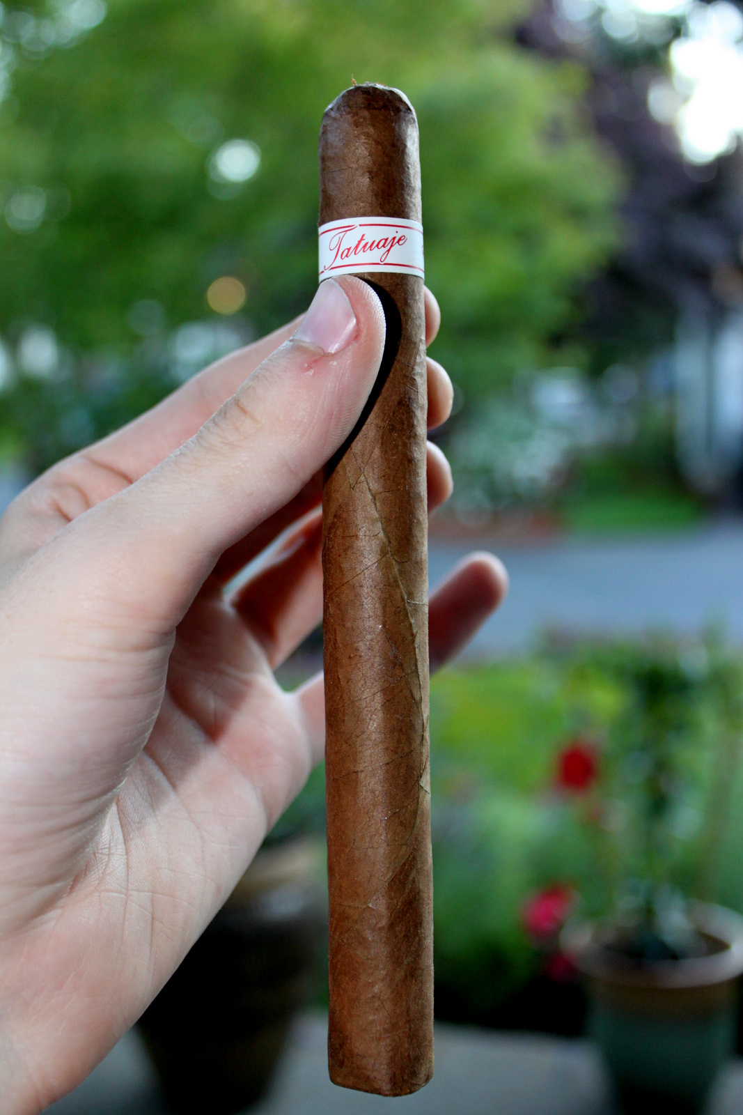 Cigar Review – Tatuaje P4 Churchill