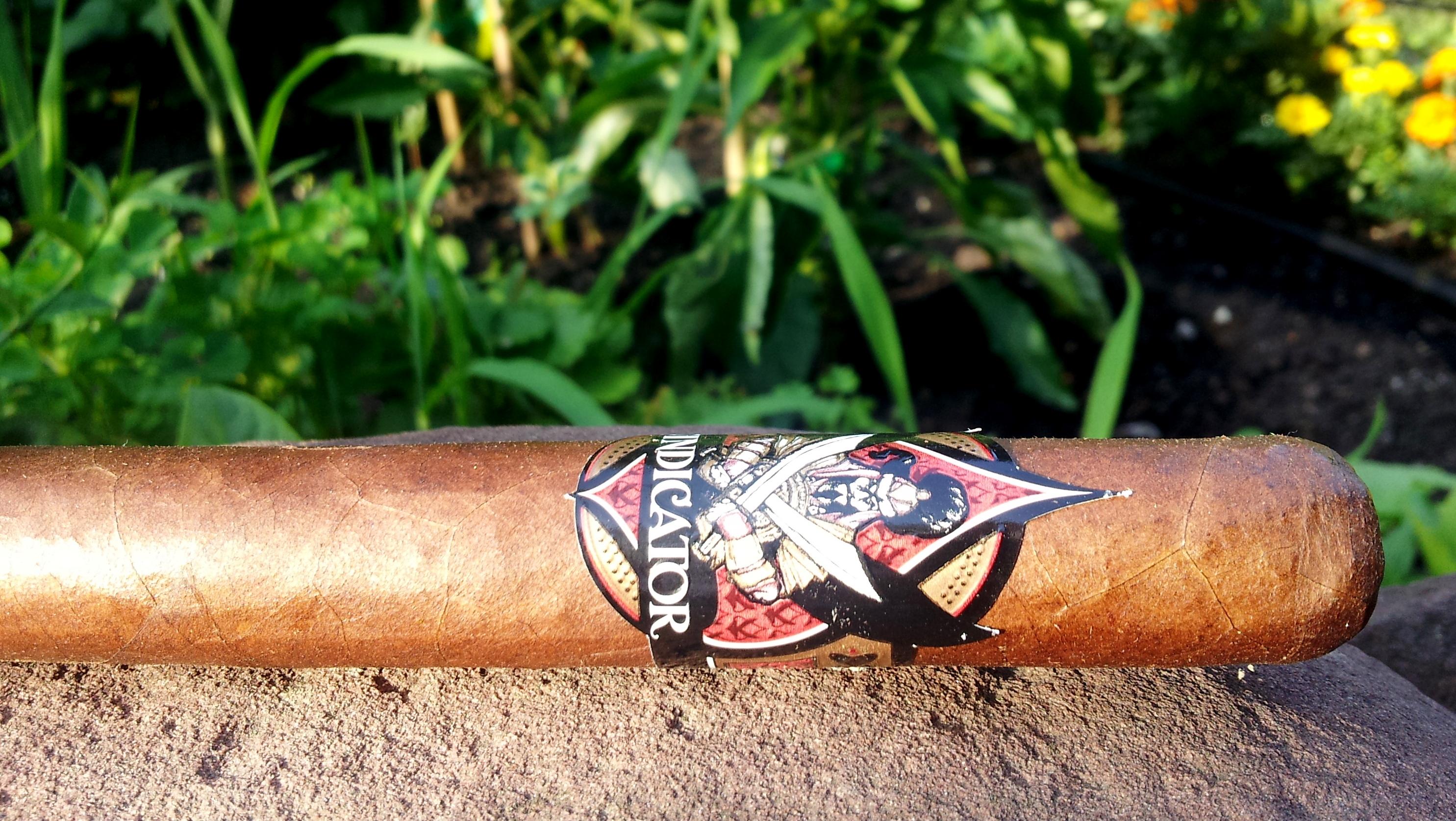 Cigar Review: Oliva Vindicator